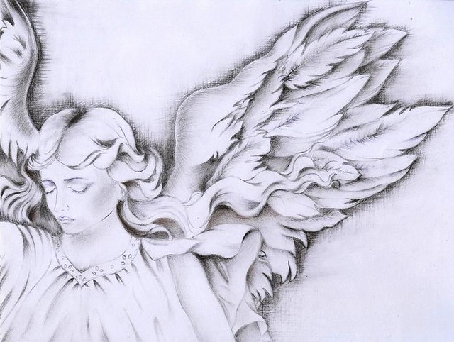 Angel Wings Drawing  Handrawing Made With Charcoal -4014