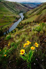 Spring on the Grande Ronde | by Nathaniel Reinhart