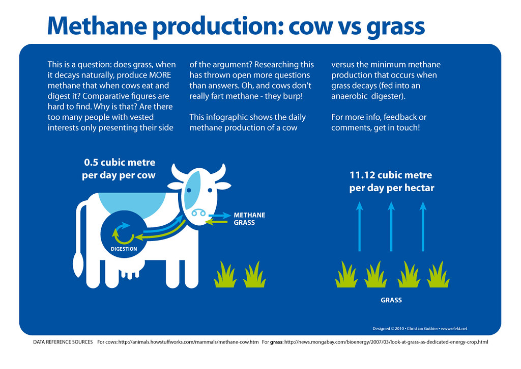 methane production Methane – biogas – production guide basic properties of methane methane is a colourless, odourless, flammable1 gas and the main constituent, 85% to 90%, of the pipe natural gas that we use in our homes in the uk, europe and the.