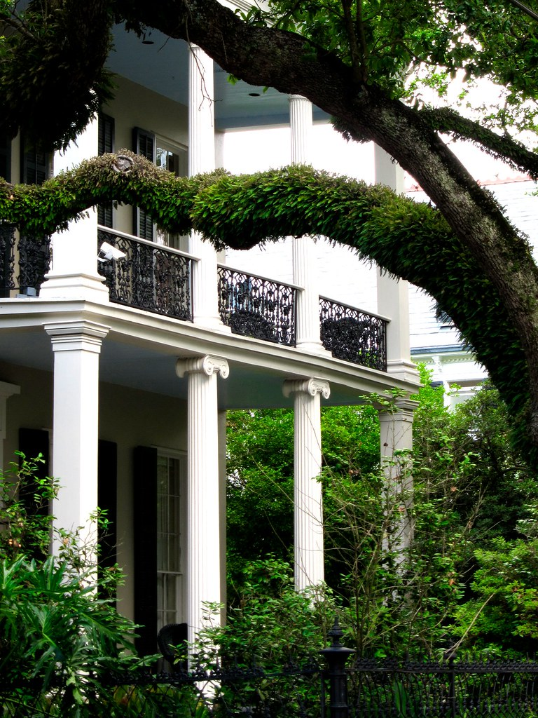 garden district view of a home in new orleans 39 famous gard flickr. Black Bedroom Furniture Sets. Home Design Ideas