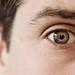 Mr bright eyes (4 of 52)