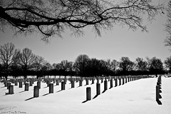 20100131C_ArlingtonCemetery05 | by Troy Thomas
