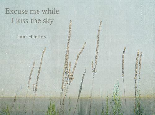 Excuse me while I kiss the sky ~ Jimi Hendrix | Thanks to ...