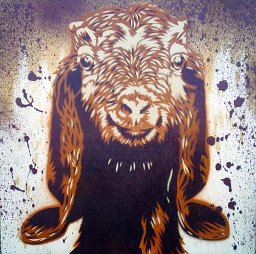 goat face killah stencils amp spraypaint on wood mr