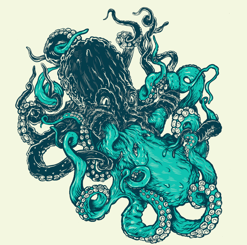 Free Octopus Drawings Free Designs Octopus Swiming