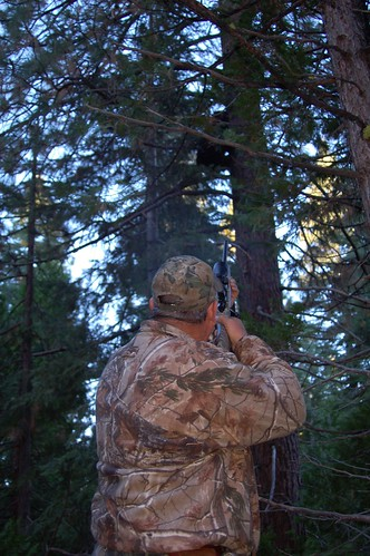 November 6 2010 Bear Hunting | by Cowgirl Jules