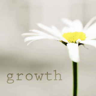 growth | by balanced.crafts
