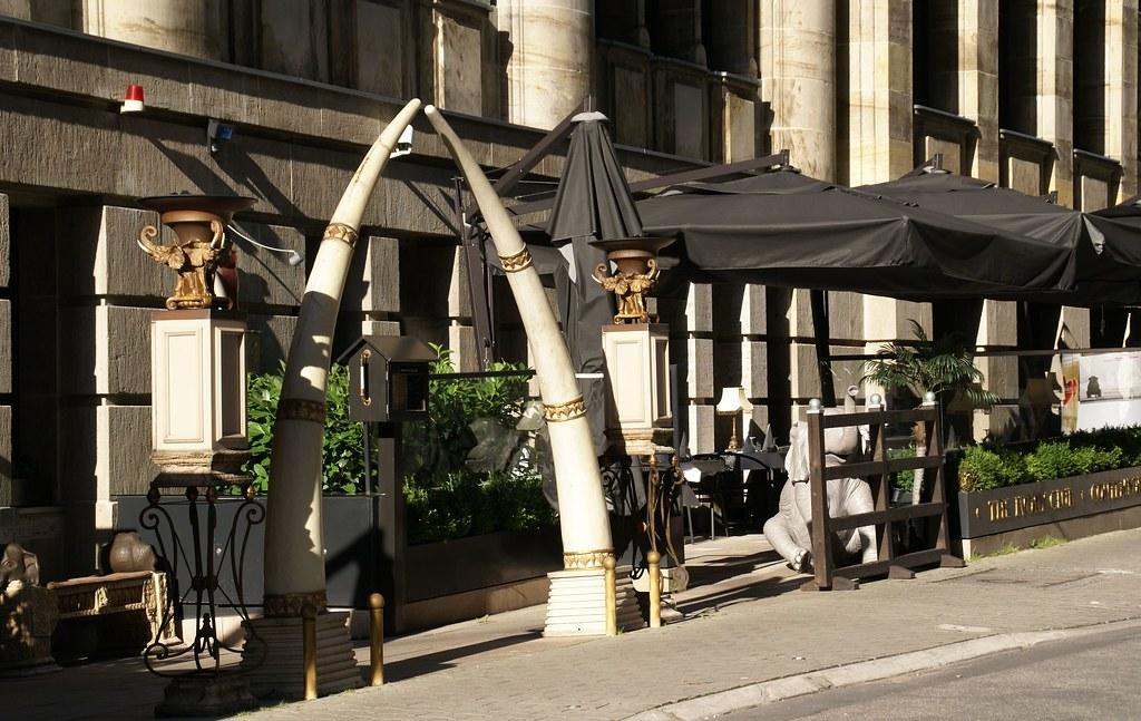 frankfurt guiollettstrasse the ivory club im westend atm flickr. Black Bedroom Furniture Sets. Home Design Ideas