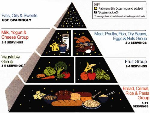 us rda nutrition-foodpyramid | dbcell | flickr, Human Body