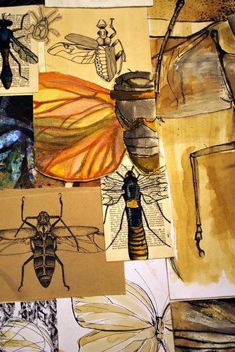 insect mood board | A collection of sketches and drawings ...