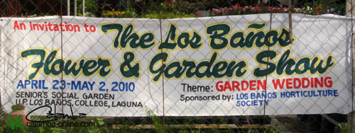 Banos Online.Los Banos Garden Show Los Banos Philippines Calamba Onl