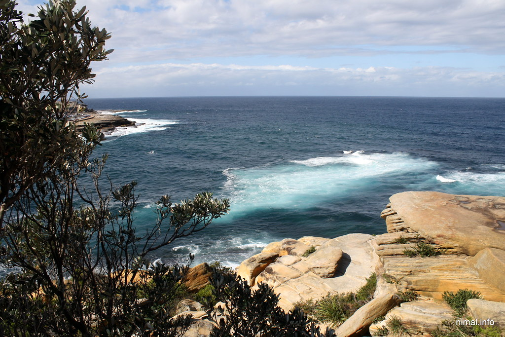 how to get to coogee beach from sydney cbd