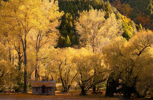 Autumn in Arrowtown | by Chris Gin