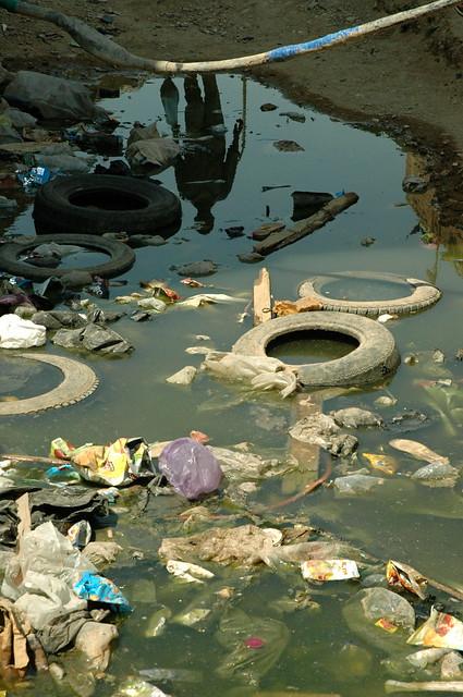 Reflejo de un hombre en un charco de agua estancada for Peces de agua estancada