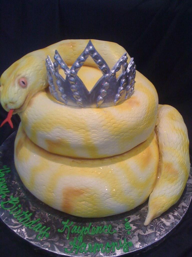 Snake Birthday Cake Jessicayounghans Flickr