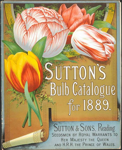 Suttons1889-cover | by Eye magazine