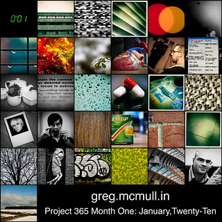 Project 365: January Mosaic | by Greg McMullin