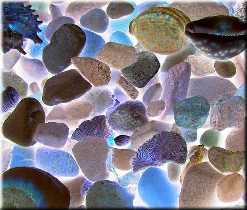 Piedras preciosas del mar