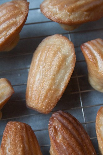 Lemon Glazed Madeleines | Explore edwardkimuk's photos on Fl ...