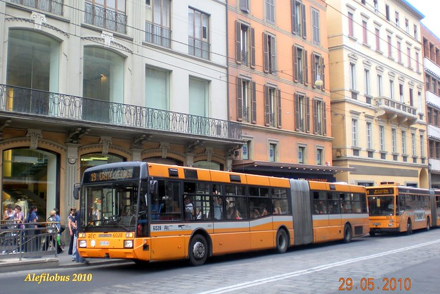 linea 19 bus: