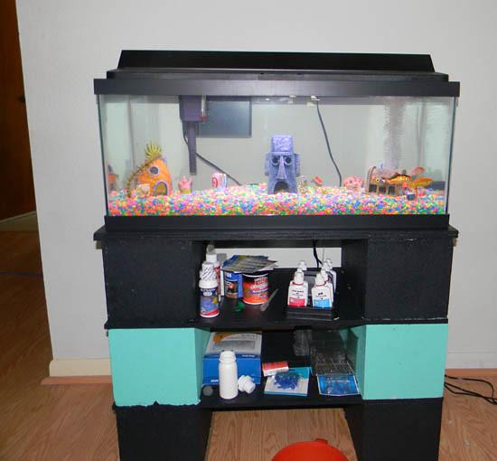 Spongebob aquarium my spongebob aquarium with for Spongebob fish tank accessories