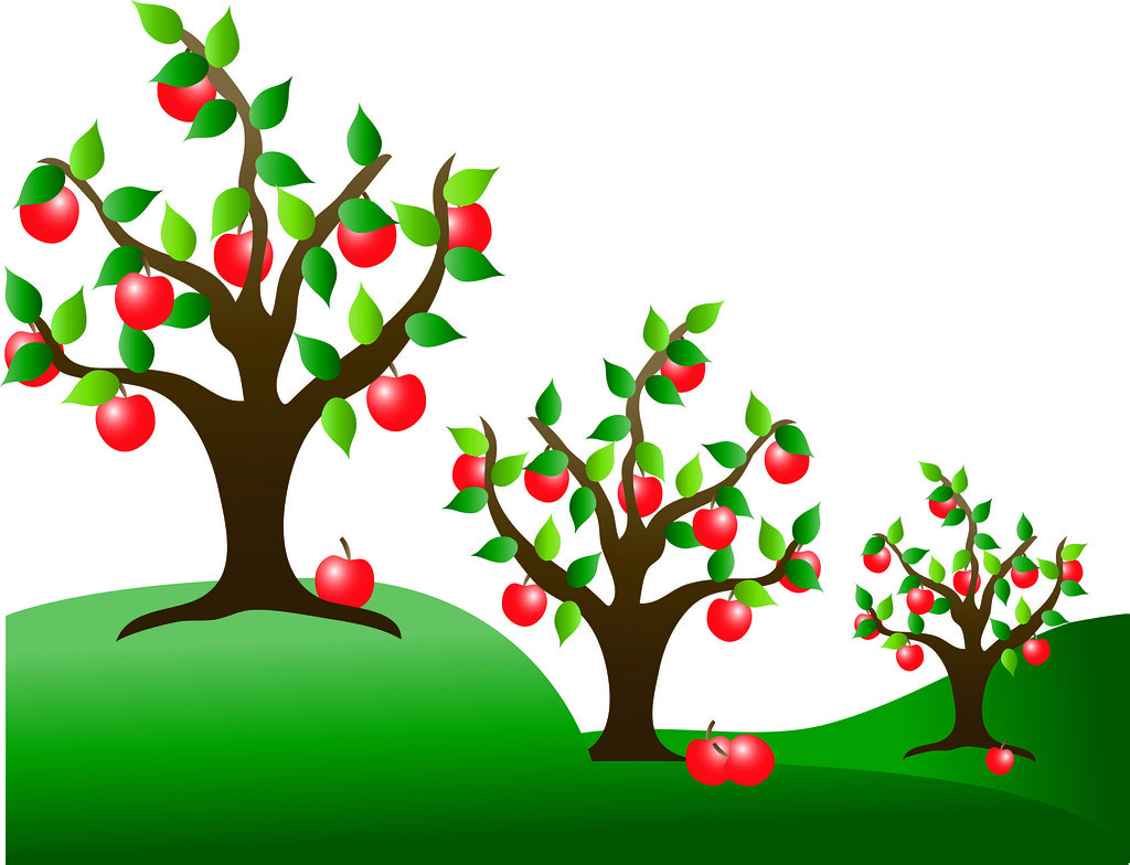 Clip Art Illustration of Apple Trees in an Orchard   Flickr