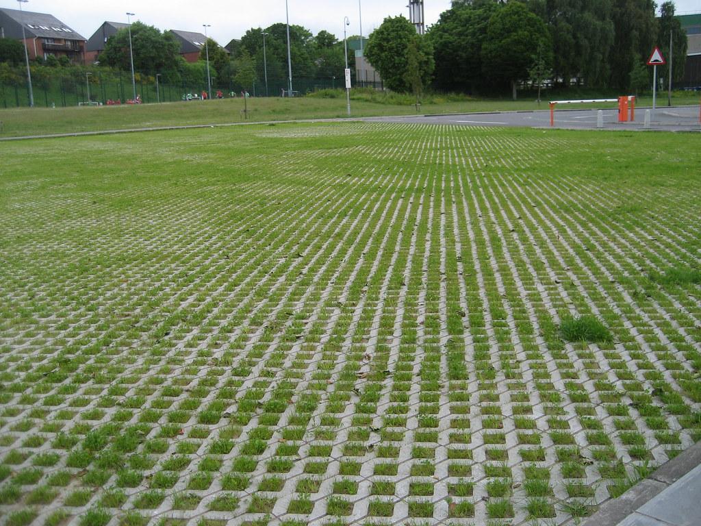 Qub Pec Car Park Grasscrete Still Settling 2010 06 11