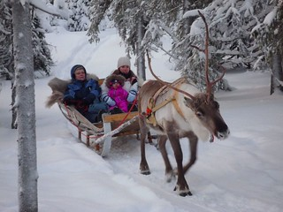 Reindeer Rides | by timo_w2s