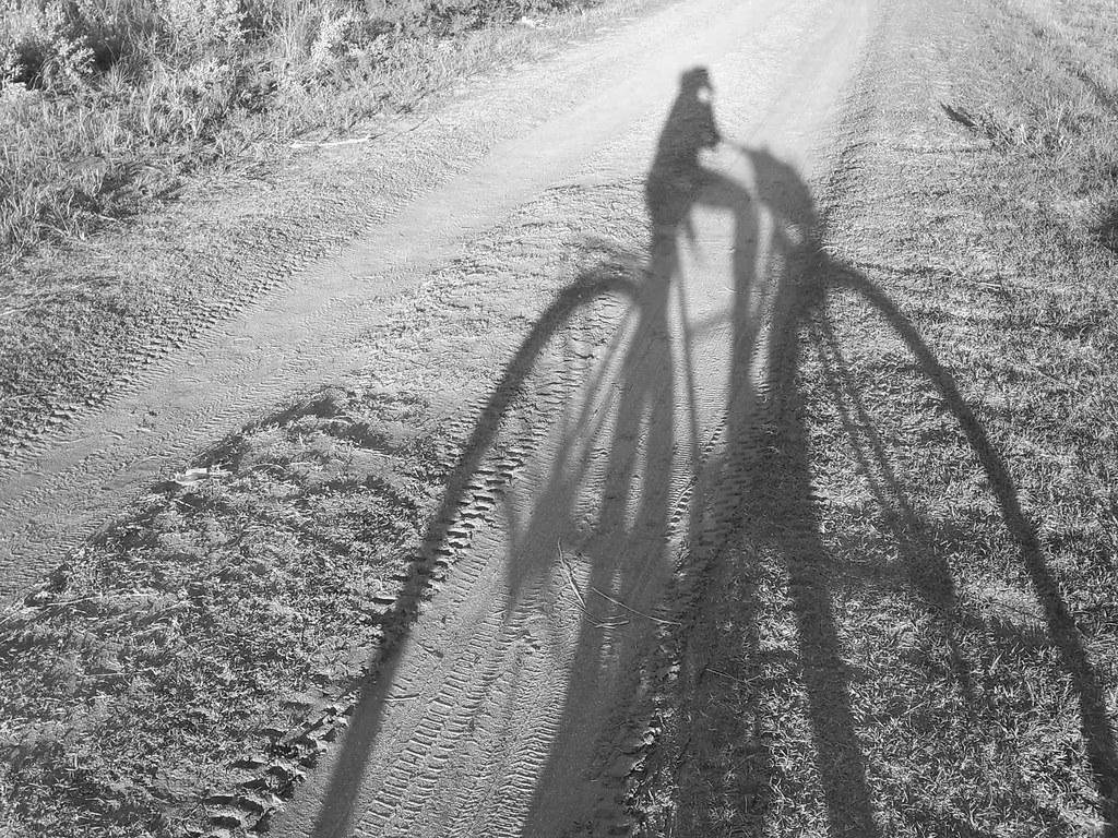 El Elogio De La Sombra La Sombra Es Un Concepto Que