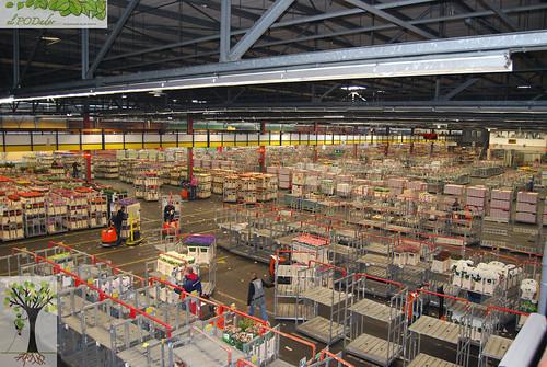 Almacen central 2 jose lobato flickr for Almacen de plastico para jardin