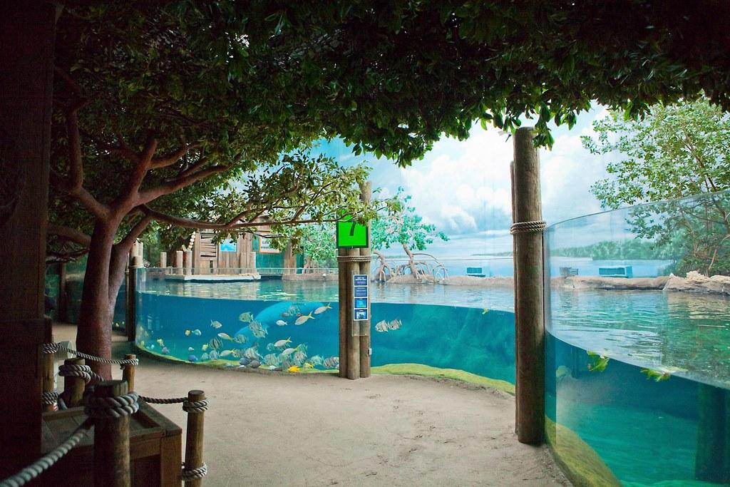 manatee exhibit