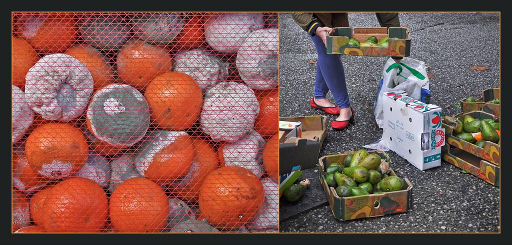 salade avocat saumon et orange www 750g fiche de cuis flickr