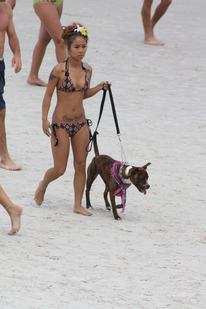 tattooed beach girl amp dog scott s flickr