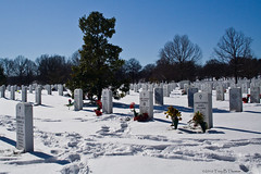 20100131C_ArlingtonCemetery06 | by Troy Thomas