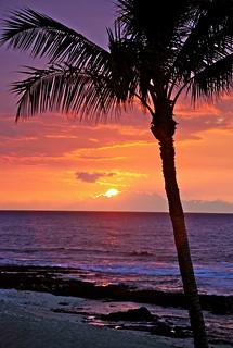 Earth Sunset
