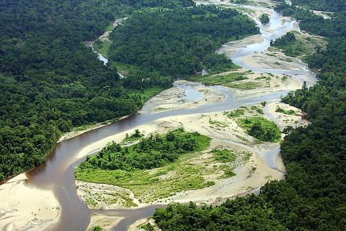 Jungle river jungle river near timika papua province for Jungle furniture white river