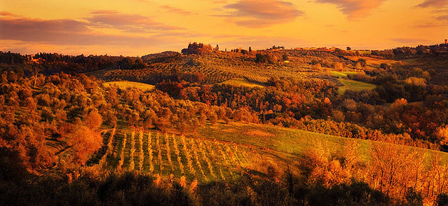 Sunset over rolling tuscan hills villa vineyard www for Tuscan california