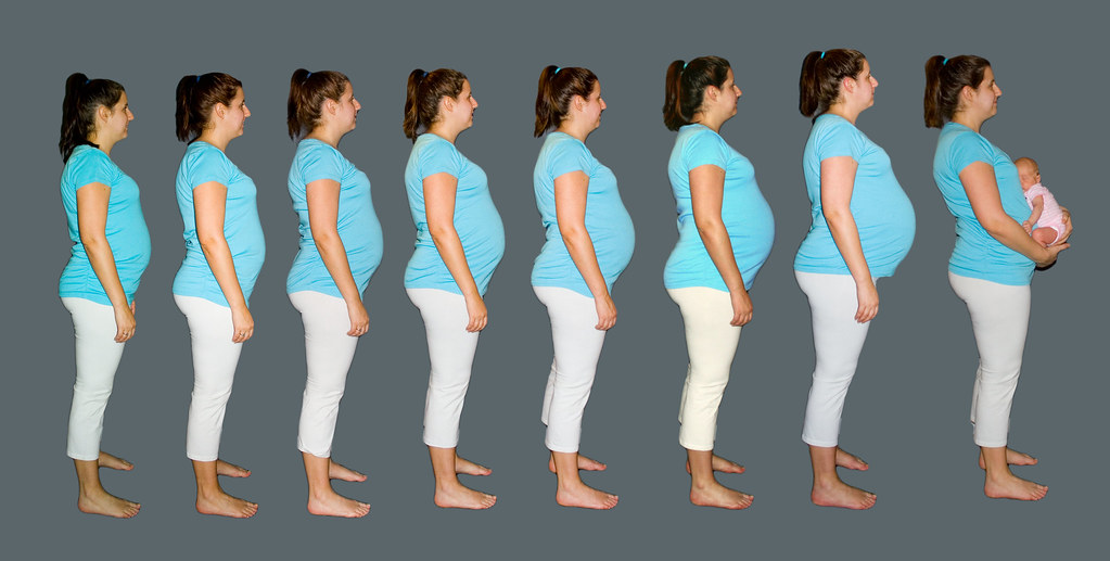 Belly Progression | The progression of the belly. In this ...