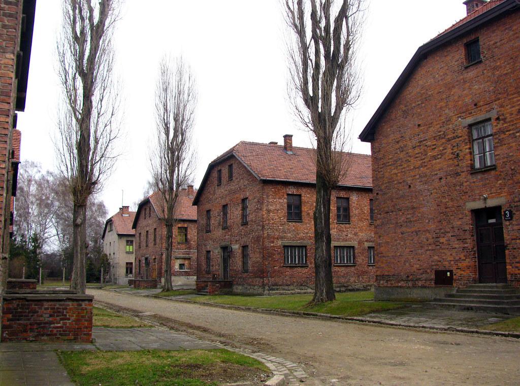 Toady 1 Auschwitz 1 Poland ~ t...