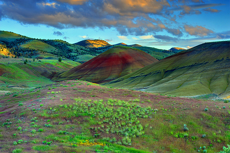 Natural Elements The Painted Hills Oregon I Like The