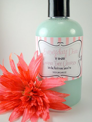 Sulfate Paraben Free Body Wash Cleanser 9 Oz Fresh Ging