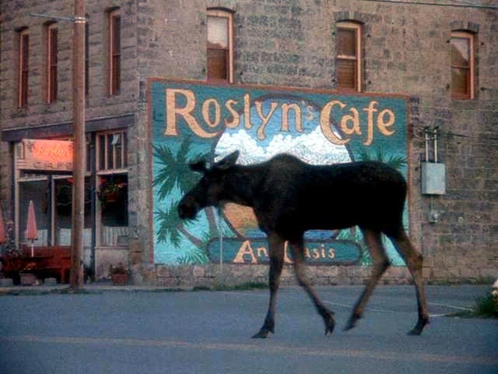 The Blue Moose Cafe Menu