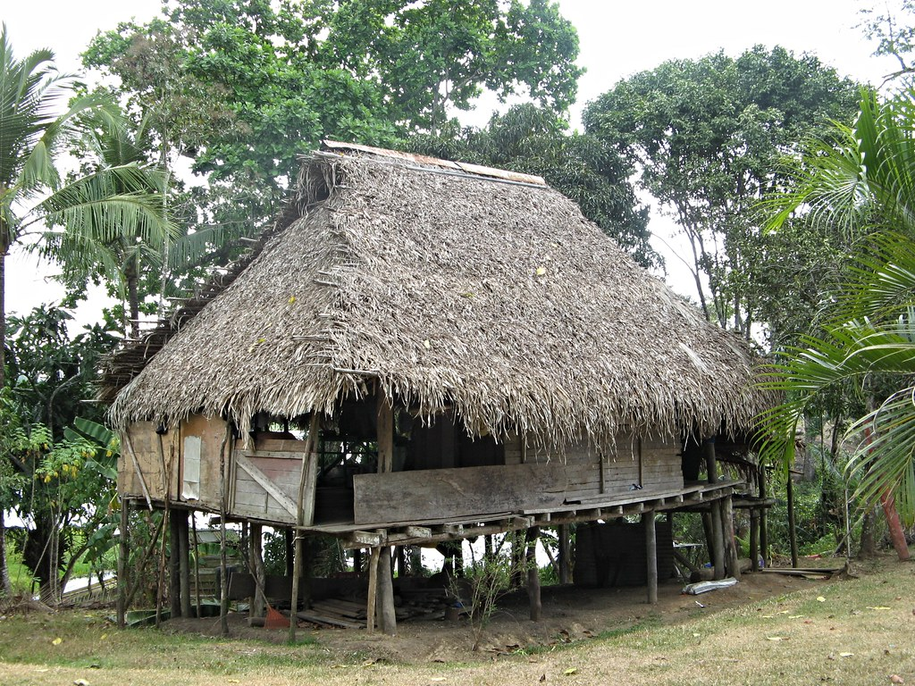 Embera Indian Huts With Thatched Roofs Panama