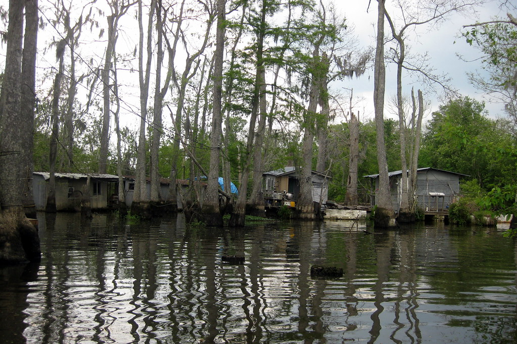 Swamp Tours Slidell La
