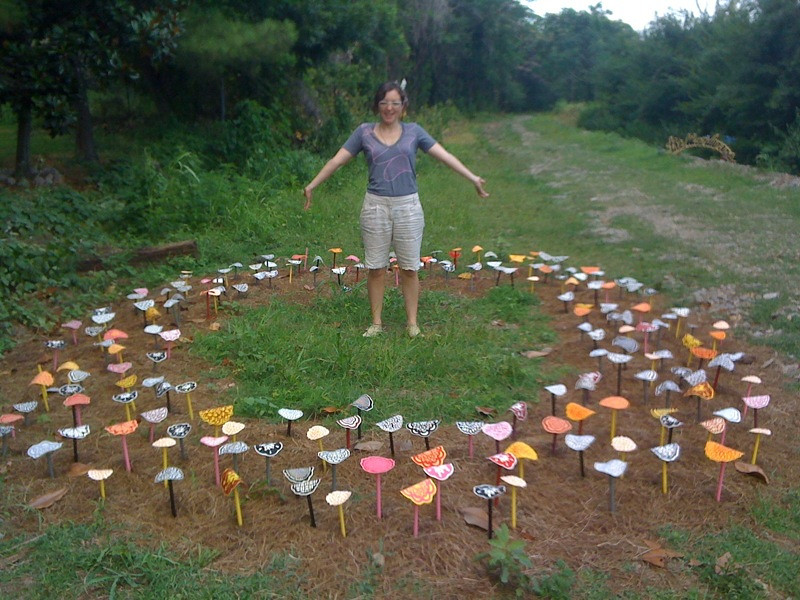 Fairy Ring Rs