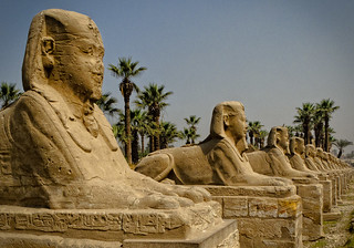 Avenue of the Sphinxes | by sdhaddow