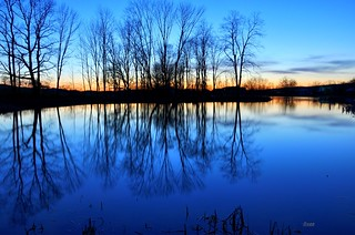Another Blue Reflection | by eaglexl