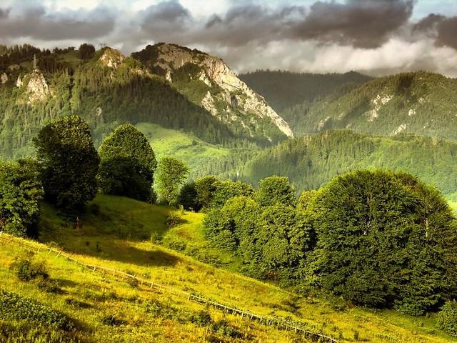 Bosna i Hercegovina - Page 2 4535222194_b7fd8d4978_z