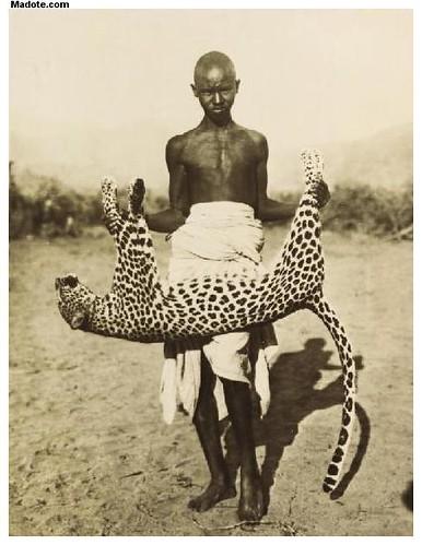 Eritrea Eritrean Boy Holding A Dead Leopard Near Barentu
