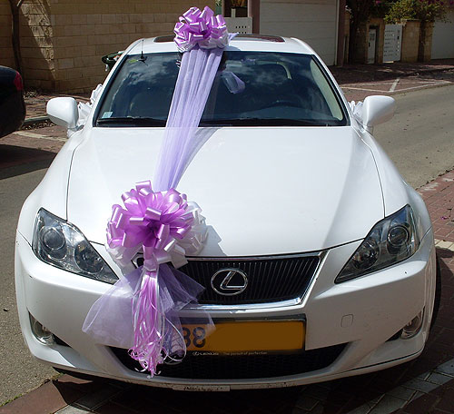 Wedding car decoration learn how to decorate your for Automotive decoration